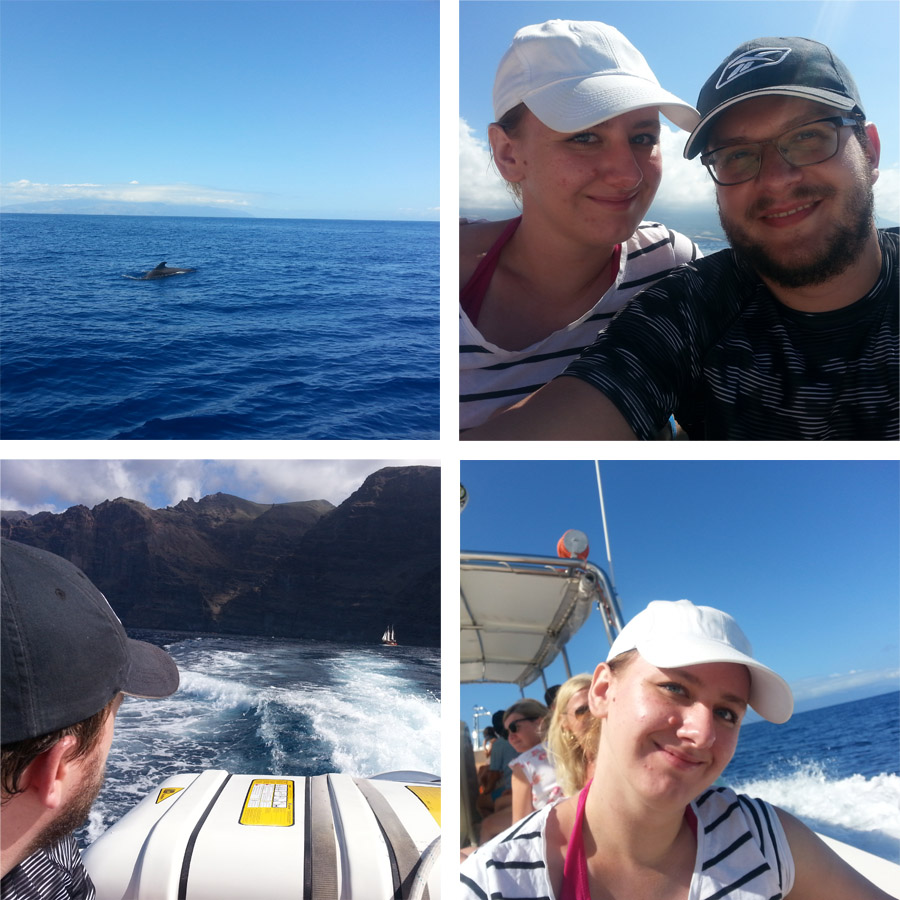 Teneryfa oglądanie delfinów