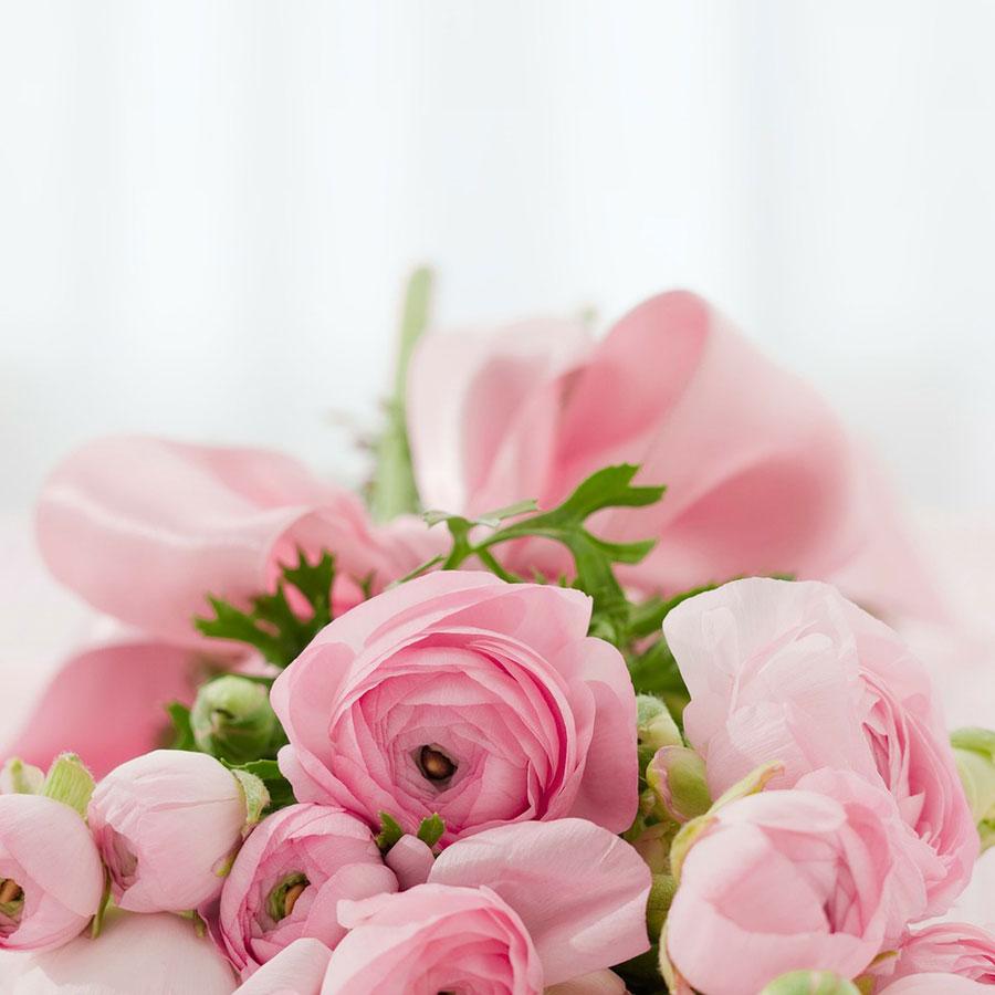 Co zamiast kwiatow naslub?