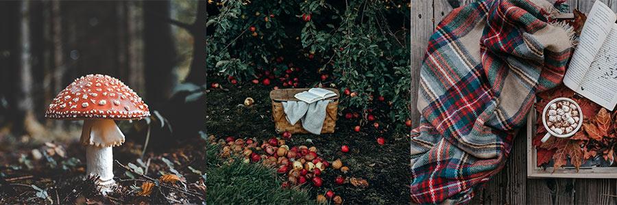 Jesień jako motyw przewodni ślubu iwesela